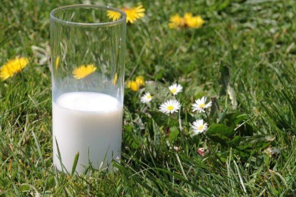 H-Milch in einem Glas