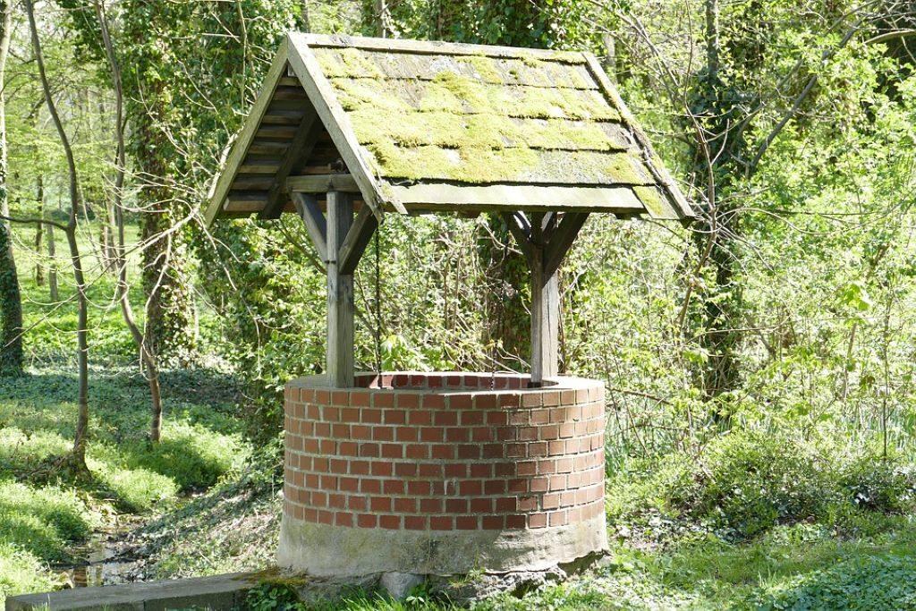 Brunnen im Wald